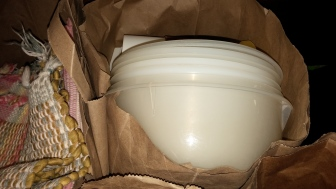 Tupperware containers were among the donations bound for the Lehigh Valley Outreach Depot in Bethlehem.