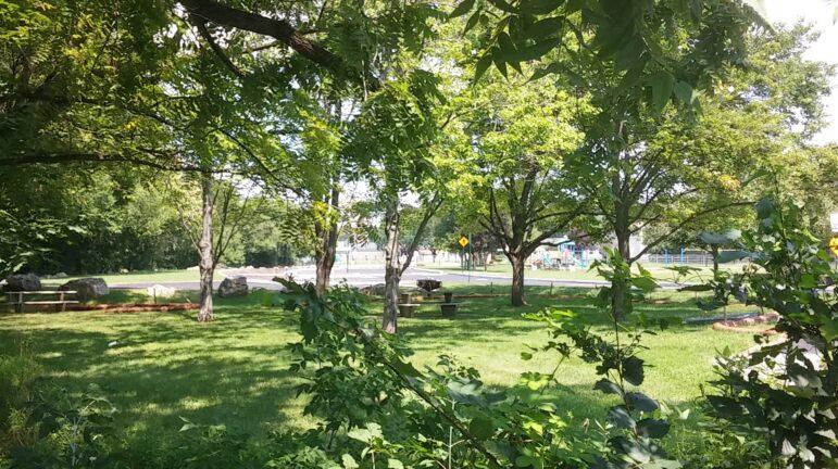 Water Street Park