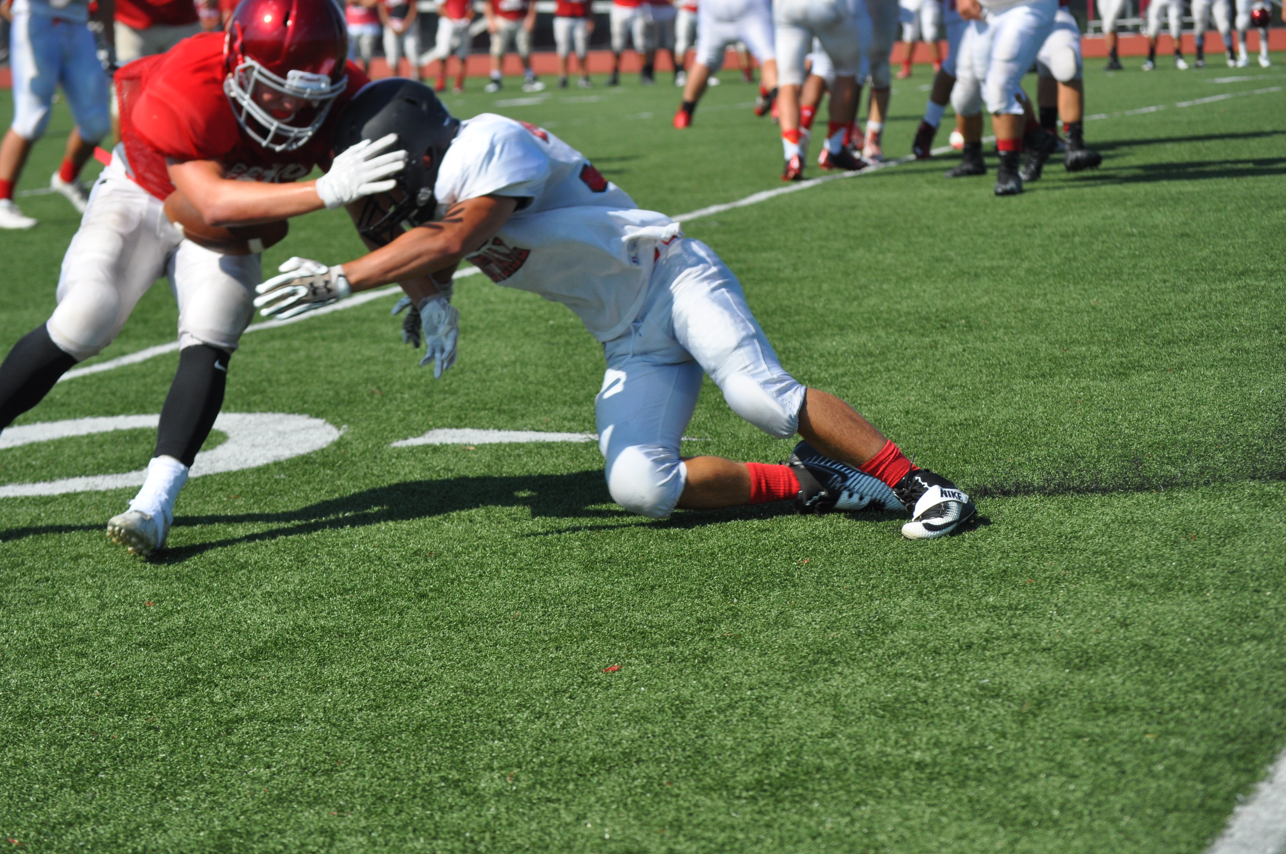 Saucon Valley Panther Steven Rose from his cornerback position has a nose for the football.