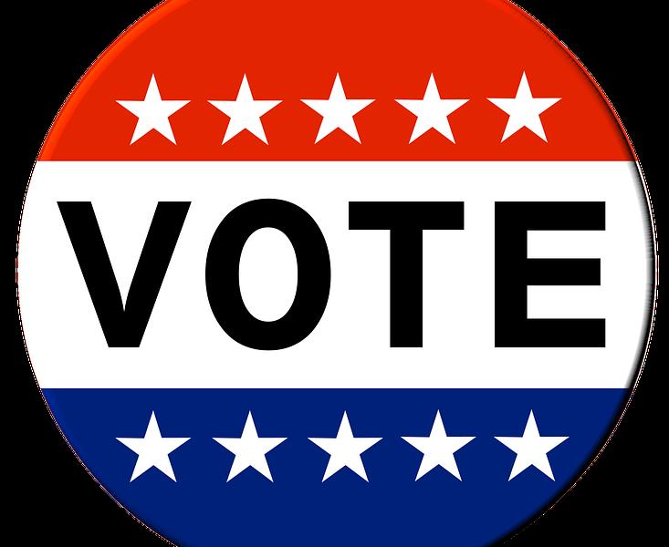vote primary election