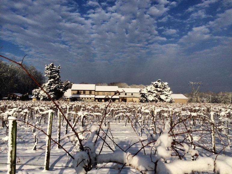 Buckingham Valley Vineyards Wine