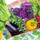veggies help