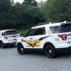 Lehigh Cops Purse Stolen