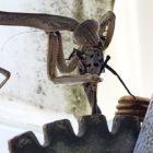 Praying Mantis Lanternfly