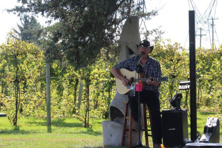 Live music at Buckingham wines