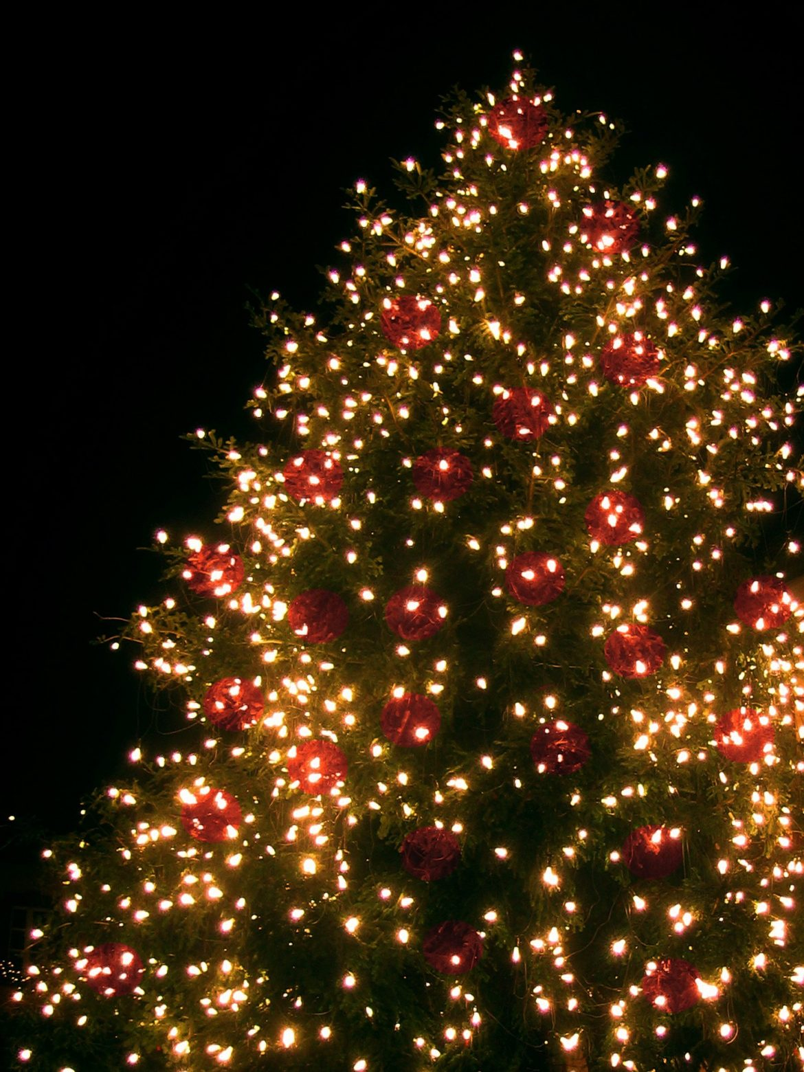 christmas tree lighting coopersburg