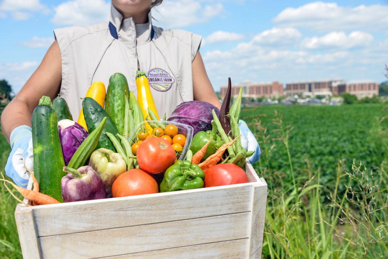 Farm Healthy Food Pledge