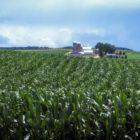 pennsylvania Giant grant farm food