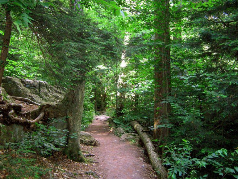 State Park Pennsylvania