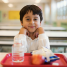 Free School Meals Lunches