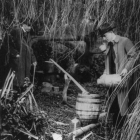 Moonshiners Hellertown Woods Prohibition