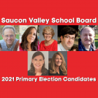 Saucon Valley School Board Primary Candidates