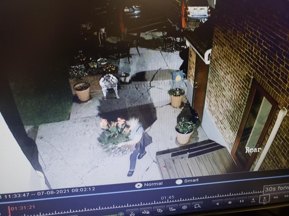 Flowerpot Thief Hellertown