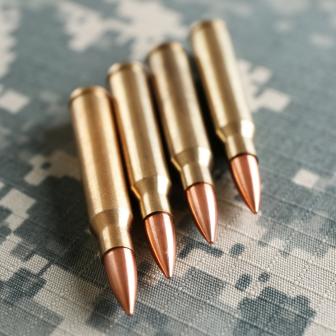 Bullets Gunpowder Ammo